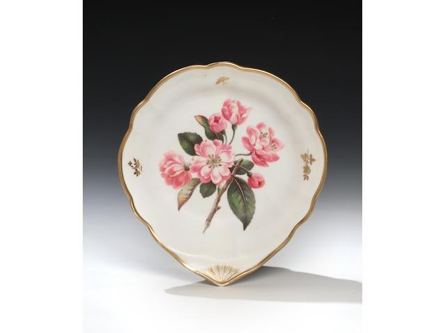 A fine Nantgarw botanical dish by Thomas Pardoe, circa 1818-20