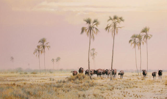 Kim Donaldson (South African, born 1952) Buffalo at Etosha