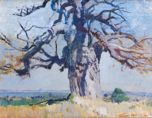 Terence John McCaw (South African, 1913-1978) 'Lone baobab'