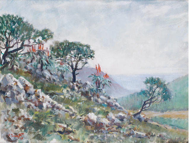 Victor Ivanoff Aloe on a hillside, 1964