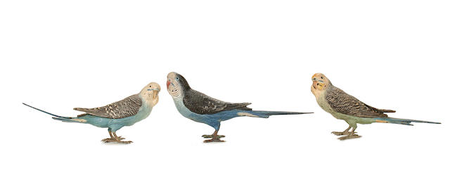 Three late 19th / early 20th century Viennese cold painted bronze models of Budgerigars