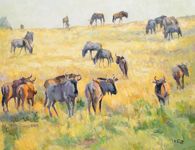 Zakkie (Zacharias) Eloff (South African, 1925-2004) Wildebeest