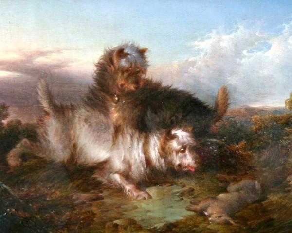 Paul Jones (British, fl. 1856-1879) Two terriers with rabbit