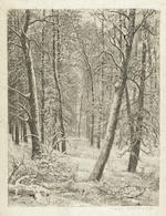Ivan Ivanovich Shishkin (Russian, 1832-1898) Eaux fortes<br> p. 213 x 314mm. and smaller