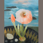 Mary Fedden R.A. (British, born 1915) Amaryllis 51 x 40.5 cm. (20 x 16 in.)