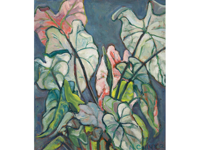 Nora Frances Elisabeth Collyer (Canadian, 1898-1979) Caladium Leaves (Study of a plowed field verso)