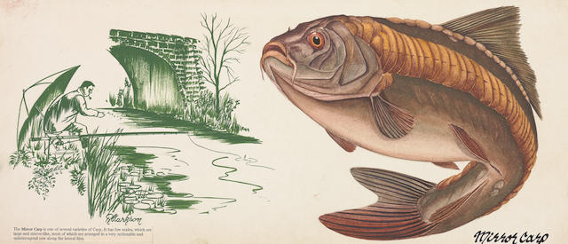 R. Clarkson A set of eight watercolours of various fish: Pike, Brown Trout, Roach, Carp, Mirror Carp, Artic Charr, White Bream & Common Bream  All mounted with a print of a fishing scene by the same artist 17.5 x 40.5cm (unframed, 8)