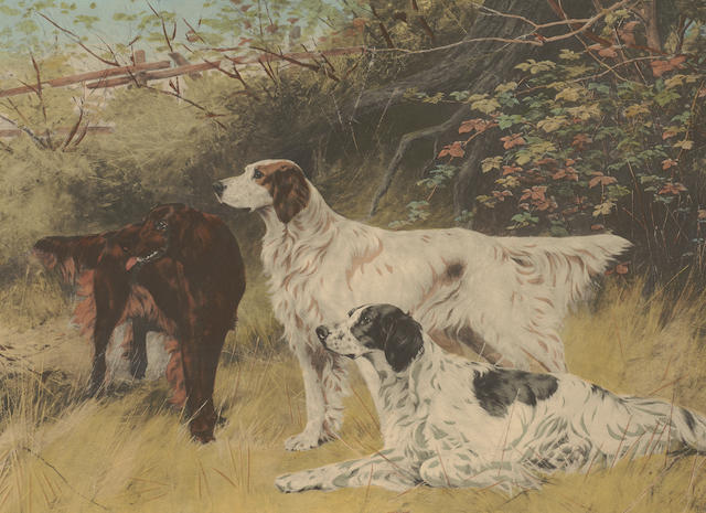 Archibald Stuart-Wortley 'Partridge Driving' A colour print and two further prints of pointers and setters (3)