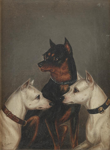 Edwin Loder of Bath (British, 1827-1885) A study of three Terriers
