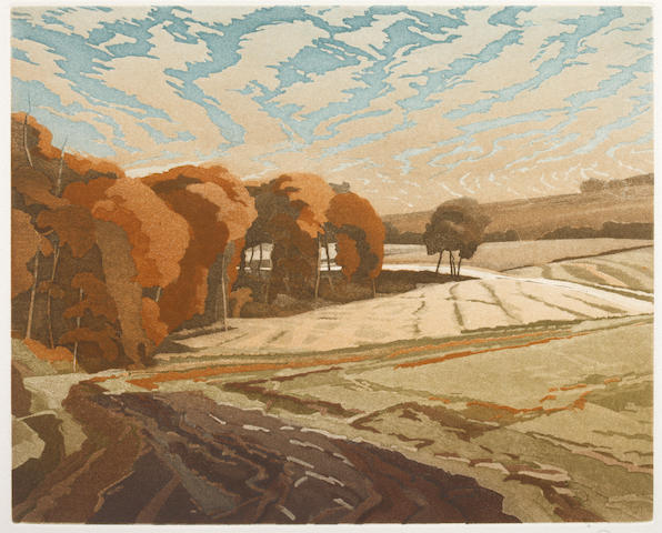 A collection of twenty-one limited edition etchings Landscape and figurative subjects, by David Suff
