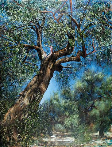 Maria Ktistopoulou (Greek, born 1948) Olive tree 180 x 140 cm.