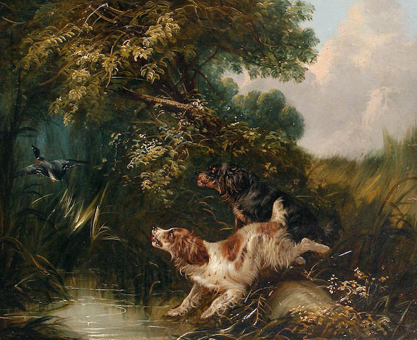 Attributed to George Armfield (British, 1810-1893) Flushing out