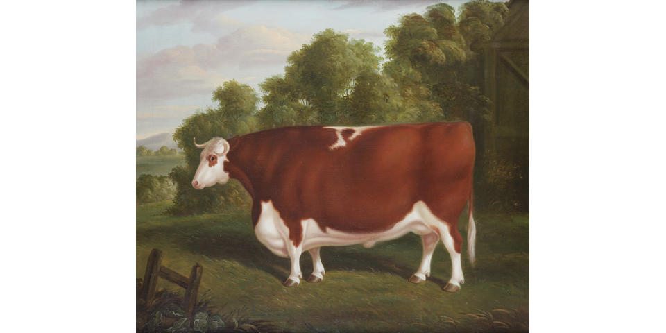 Thomas Roebuck (British, fl. 1830-1860) A portrait of a prize bull