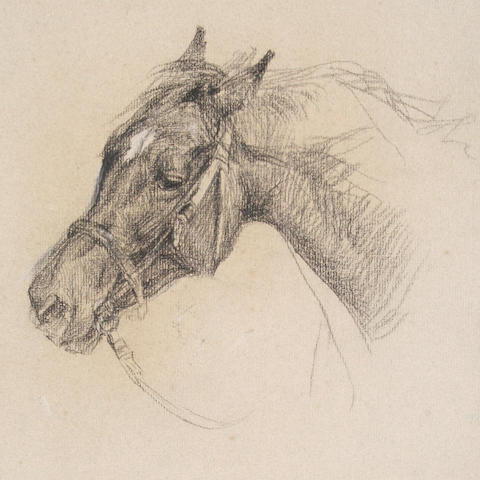 Lucy Elizabeth Kemp-Welch (British, 1869-1958) Head of a horse