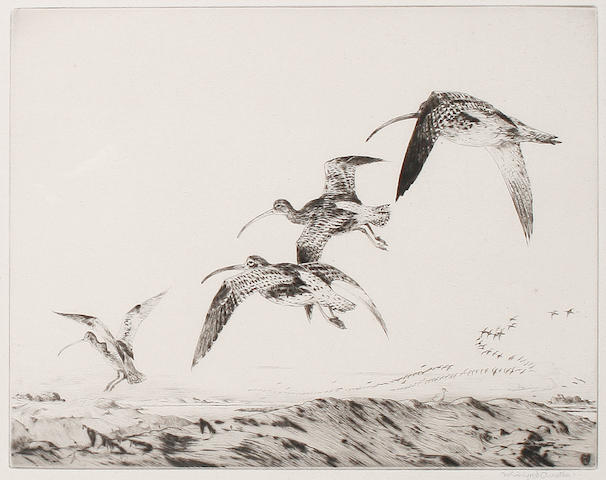 Winifred Marie Louise Austen (British, 1876-1964) Curlews; The Decoy Tool Two etchings, on wove, signed in pencil, various sizes (2)