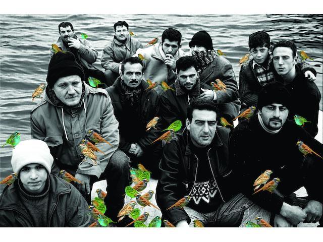 Şükran Moral (born 1962) Despair,