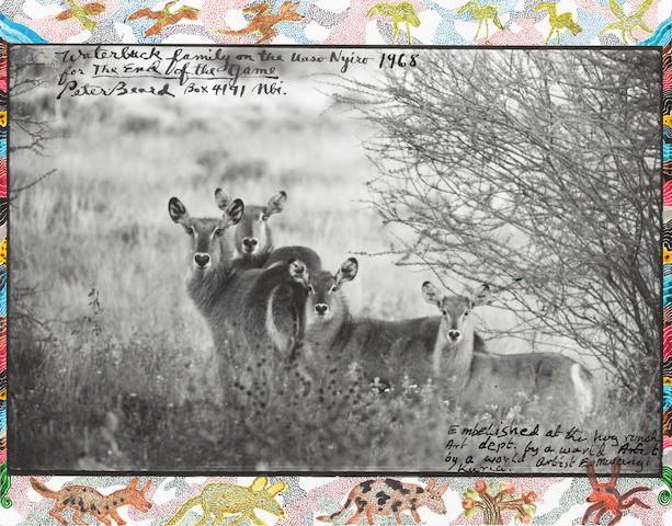 Peter Beard (American, born 1938), Waterbucks, 1968/2008, gelatin silver print, watercolour, tempera paint & ink, framed
