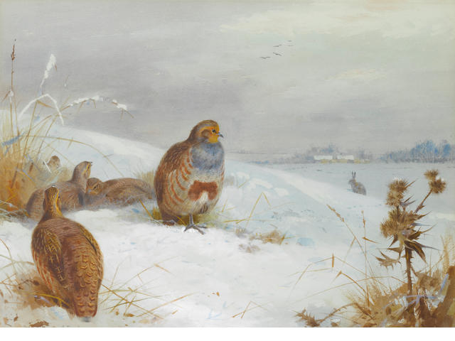 Archibald Thorburn (British, 1860-1935) Hard times- partridges and a hare
