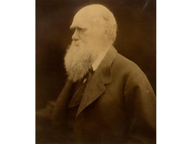 Julia Margaret Cameron (British, 1815-1879) Charles Darwin, 1868 30 x 24cm (11 13/16 x 9 7/16in).