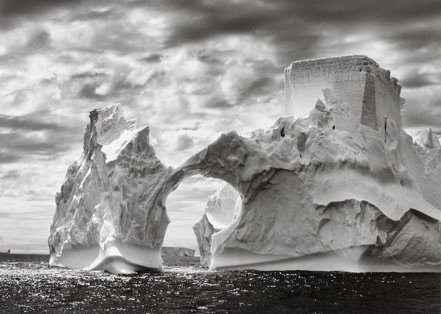 Sebastião Salgado (Brazilian, born 1944) Paulet and Shetland Islands, 2005 Paper 50 x 60.2cm (19 11/16 x 23 11/16in), image 36.6 x 50.9 (14 7/16 x 20 1/16in).