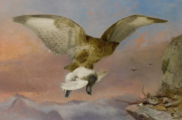 Richard Ansdell, RA (British, 1815-1885) Buzzard with Ptarmigan
