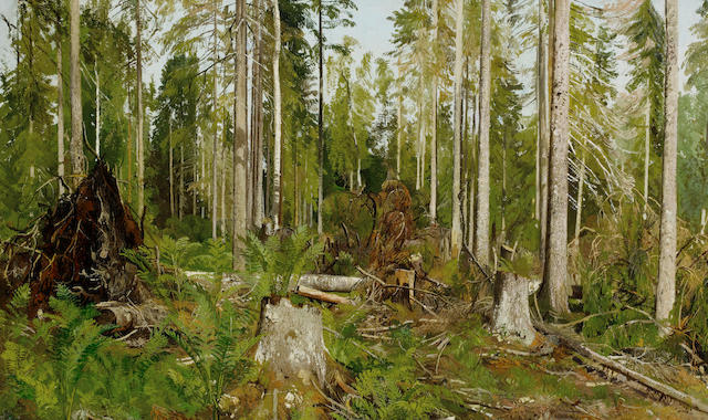Attributed to Ivan Ivanovich Shishkin (Russian, 1832-1898) Pine forest; a study, 1890s