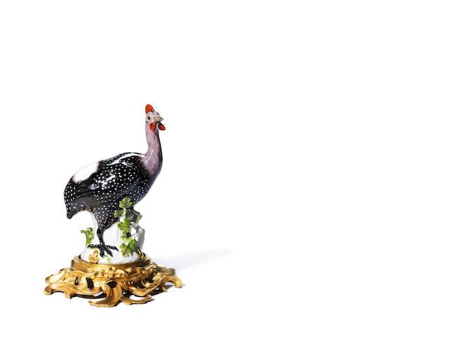 A Meissen figure of a guinea fowl, on a modern ormolu base,