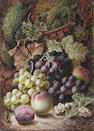 Oliver Clare (British, 1853-1927) Black and green grapes, peaches, white currants and a plum against a mossy bank  36 x 28cm.