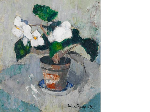 Anne Redpath, OBE RSA ARA LLD ARWS ROI RBA (British, 1895-1965) White Begonia 51 x 45.8 cm. (20 x 18 in.)