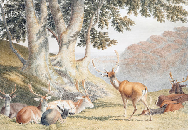 Attributed to Robert Hills (British, 1769-1844) Deer in a park