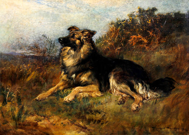 Heywood Hardy (British, 1843-1933) A dog seated on a grassy bank, possibly a collie