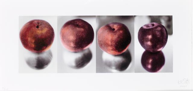 Kiki Smith (German/American, born 1954) Irisprint Screenprint, 2001, on wove, signed, and numbered 18/18 in pencil, 250 x 505mm (9 7/8 x 19 7/8in)(SH)