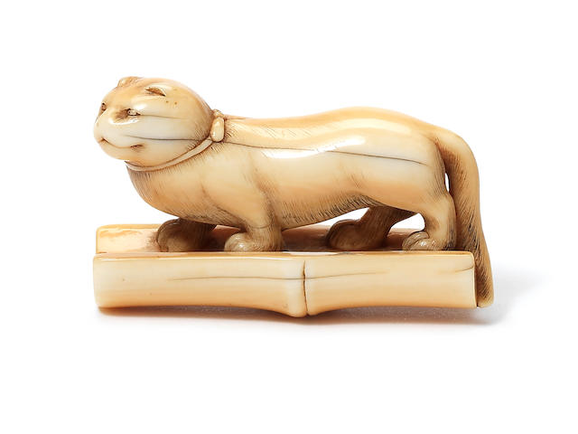 An ivory netsuke of a domestic cat Early 19th century