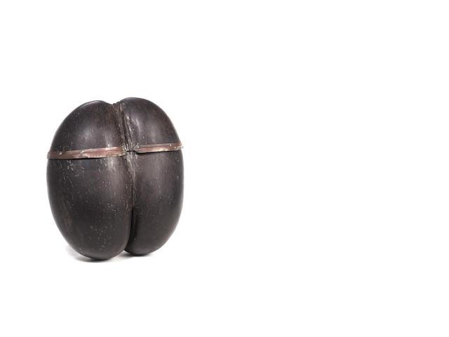 A Coco de Mer nut