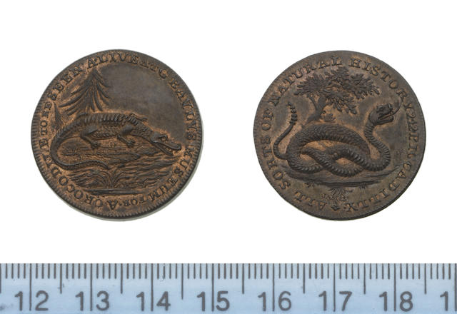 Eighteenth Century Token, LONDON, Piccadilly, Bayly's menagerie 1/2d.undated (a crocodile by a tree/a rattlesnake under a tree) D&H 253,