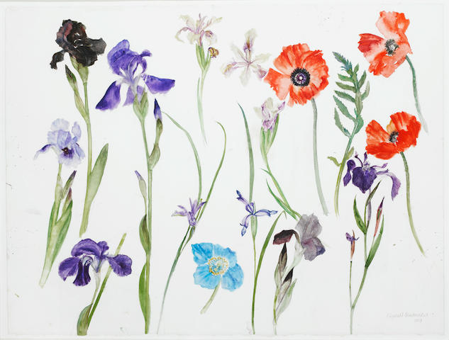 Dame Elizabeth Blackadder, OBE RA RSA RSW RGI DLitt (British, born 1931) Mixed Irises and Poppies 57.3 x 76 cm. (22 1/2 x 30 in.)