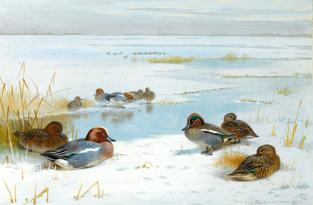 Archibald Thorburn (British, 1860-1935) Winter landscape with ducks