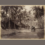 CEYLON An album off 44 views, predominantly in Ceylon, [c.1880]