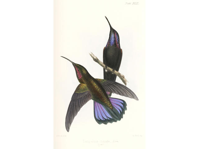 GOSSE (PHILIP HENRY) The Birds of Jamaica, 2 vol., 1847-1849; and another copy of text (3)