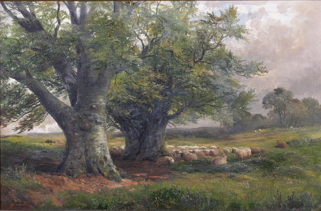 "George Turner (British, 1843-1910) ""Beech Trees near Ingleby, Derbyshire"" 40.5 x 61cm."