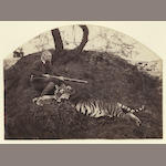 [HOOPER (WILLOUGHBY WALLACE)] A pair of portraits of tiger trophies, one featuring the hunter with a rifle seated beside his kill, [c.1870] (2)