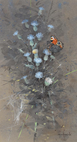 Gordon Beningfield (British, 1936-1998) Peacock butterfly