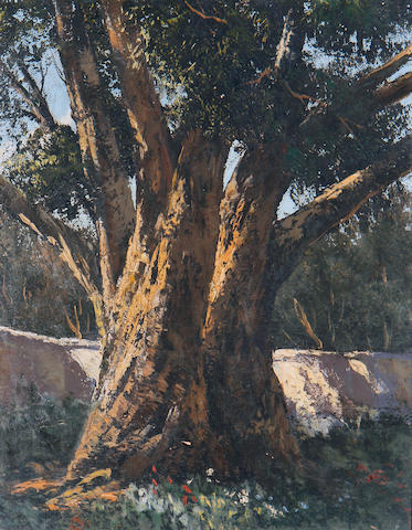 Marthinus (Tinus) Johannes de Jongh (South African, 1885-1942) The old tree