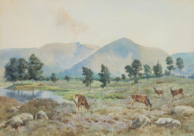 Andrew Scott Rankin (British, 1868-1942) Red stags on the moor