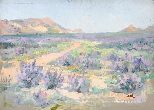 Pieter Hugo Naudé (South African, 1869-1941) Purple flowers in bloom, Namaqualand unframed