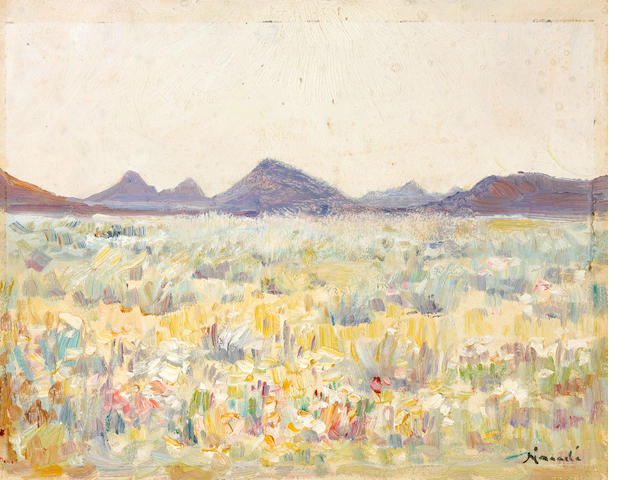 Pieter Hugo Naudé (South African, 1869-1941) Namaqualand in bloom unframed