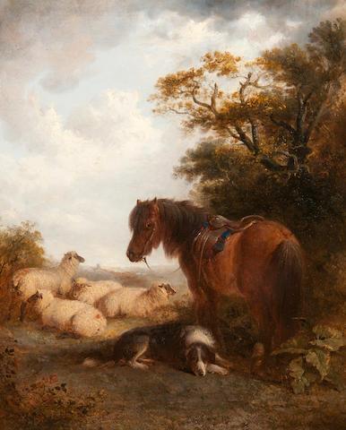 Edward Robert Smythe (British, 1810-1899) Brown pony, sheepdog and flock on a summer hillside