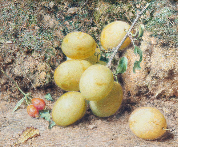 William Henry Hunt, OWS (British, 1790-1864) Magnum Bonum plums