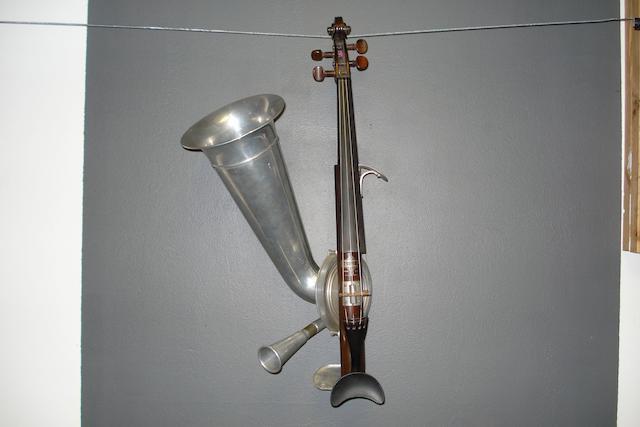 A Four String Stroviols circa 1900 (2)