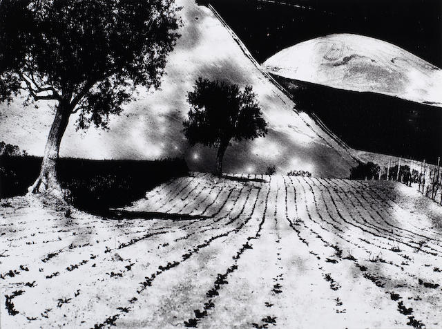 Mario Giacomelli (Italian, 1925-2000) Paesaggio mentale, from 'Presa di coscienza sulla natura' ('On Being Aware of Nature'), Marche, 1975